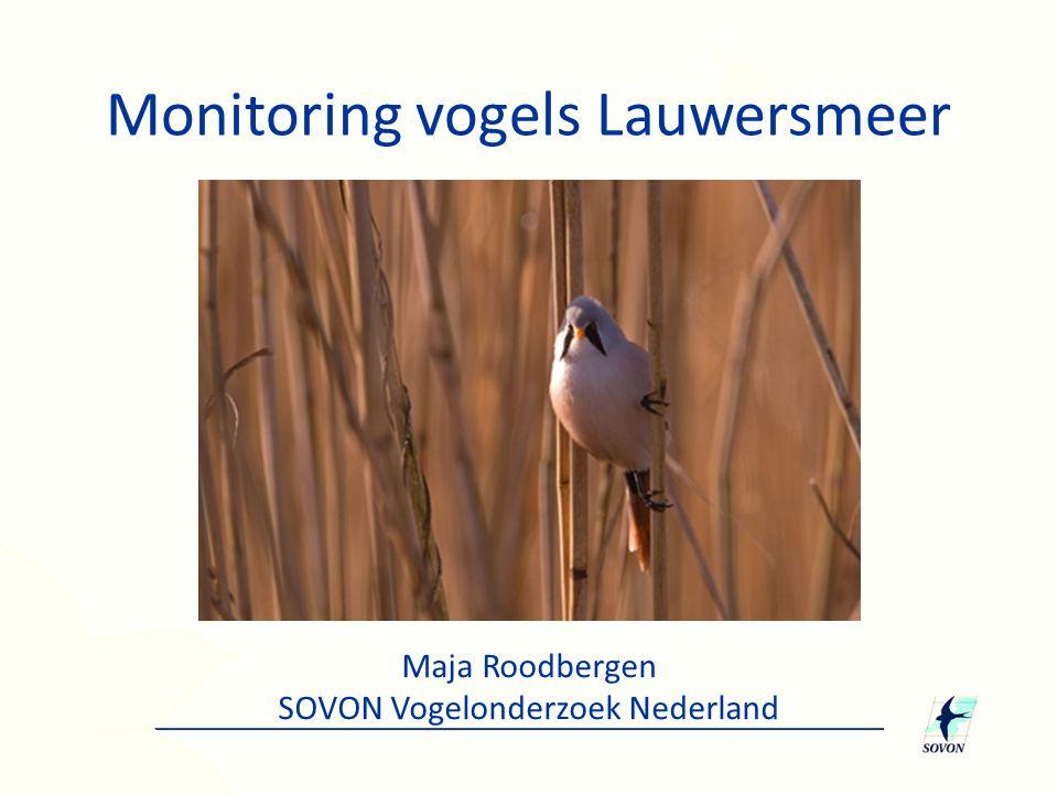 Monitoring vogels Lauwersmeer Maja Roodbergen SOVON Vogelonderzoek Nederland