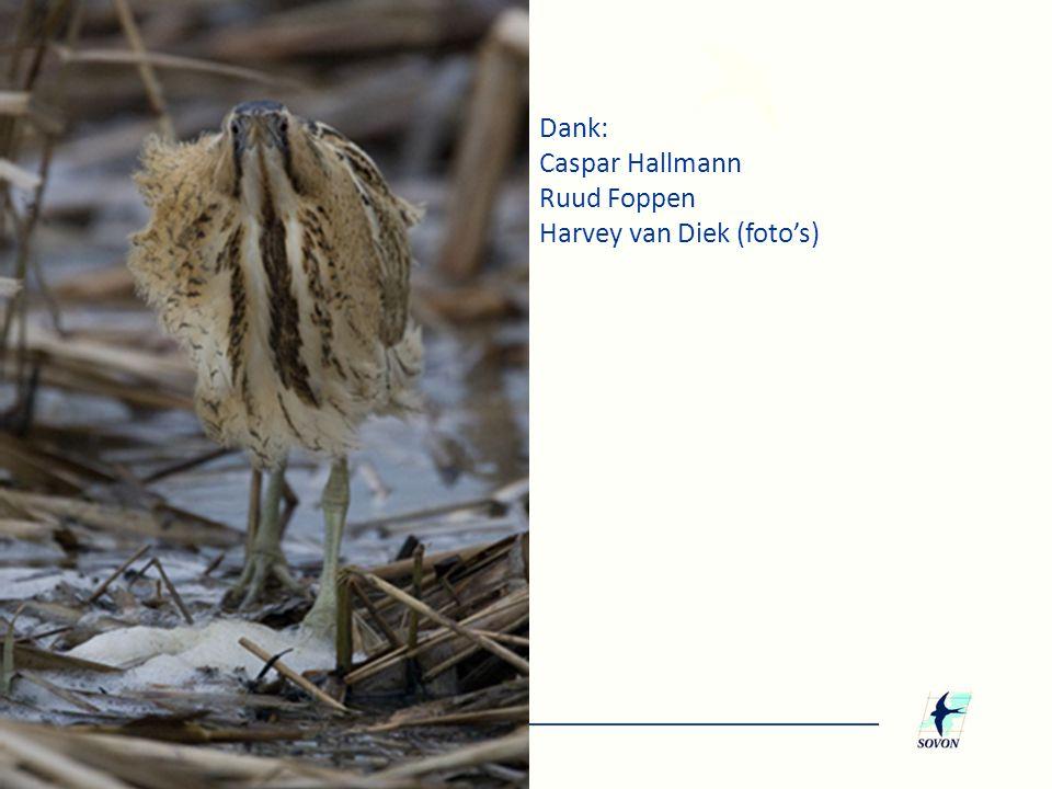 Dank: Caspar Hallmann Ruud Foppen Harvey van Diek (foto's)
