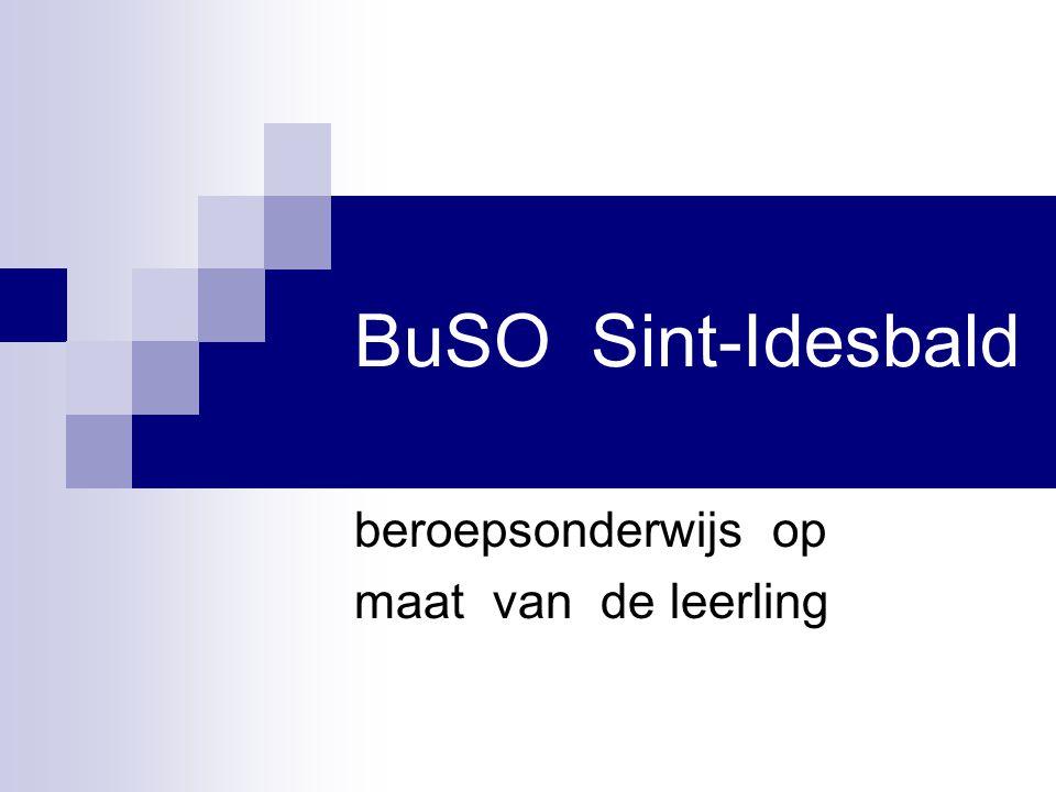 BuSO Sint-Idesbald beroepsonderwijs op maat van de leerling