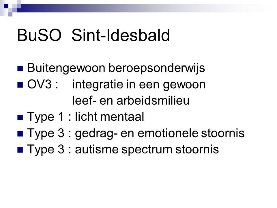 BuSO Sint-Idesbald  Buitengewoon beroepsonderwijs  OV3 : integratie in een gewoon leef- en arbeidsmilieu  Type 1 : licht mentaal  Type 3 : gedrag- en emotionele stoornis  Type 3 : autisme spectrum stoornis