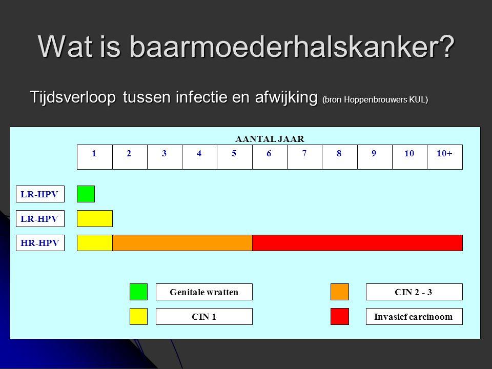 Wat is baarmoederhalskanker? Tijdsverloop tussen infectie en afwijking (bron Hoppenbrouwers KUL) 1234567891010+ Genitale wratten CIN 1 CIN 2 - 3 Invas