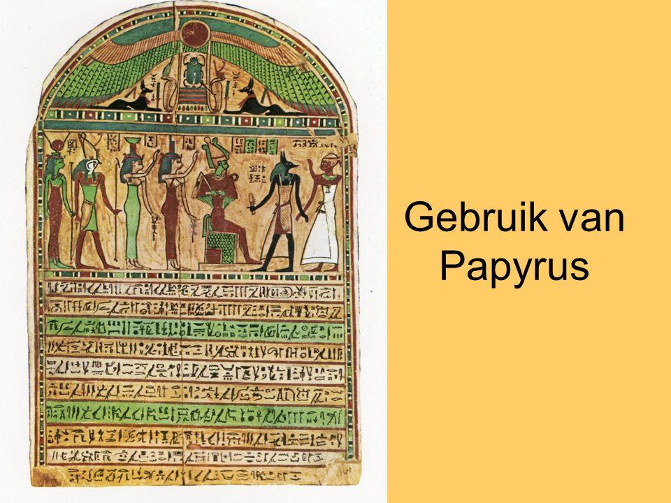 Gebruik van Papyrus