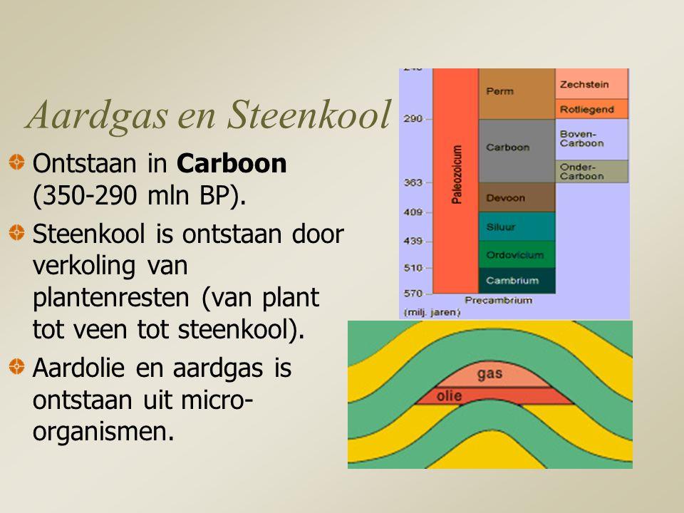 Aardgas en Steenkool Ontstaan in Carboon (350-290 mln BP).