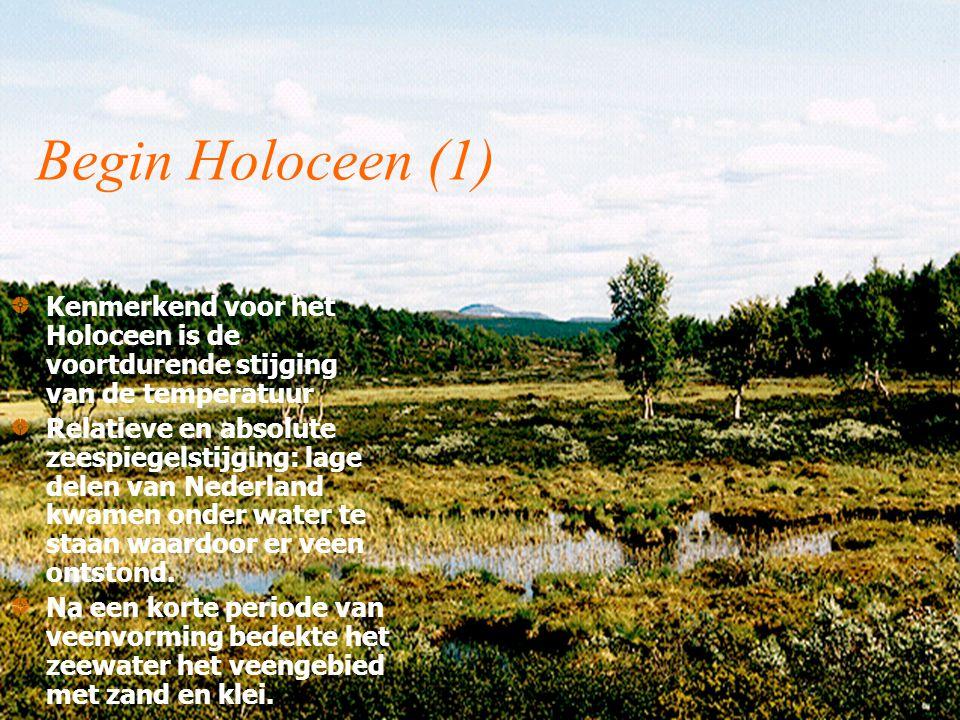 Begin Holoceen (1) Kenmerkend voor het Holoceen is de voortdurende stijging van de temperatuur Relatieve en absolute zeespiegelstijging: lage delen van Nederland kwamen onder water te staan waardoor er veen ontstond.