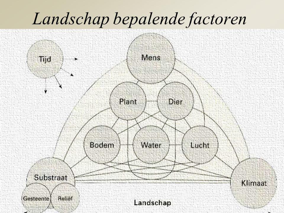Landschap bepalende factoren