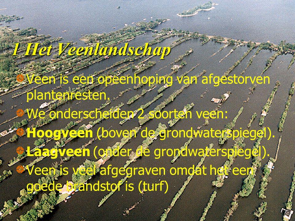 1 Het Veenlandschap Veen is een opeenhoping van afgestorven plantenresten.