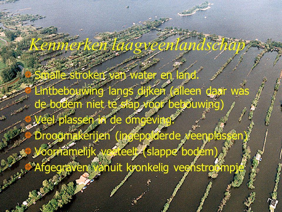 Kenmerken laagveenlandschap Smalle stroken van water en land.