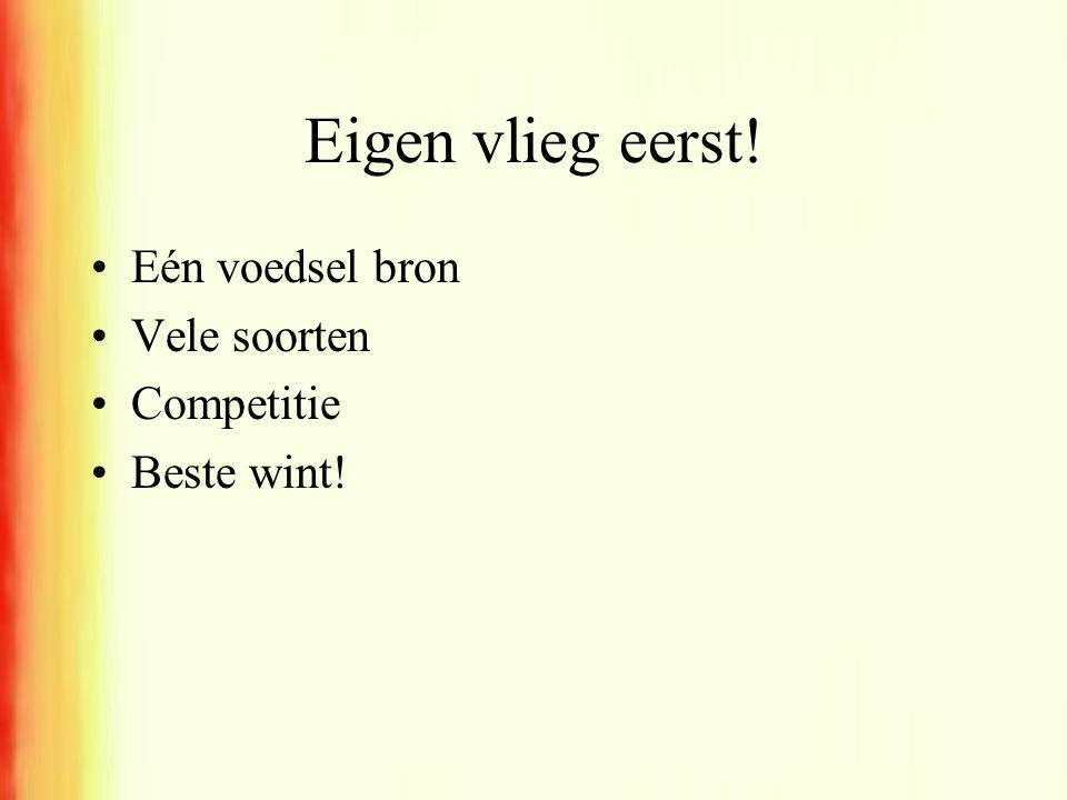 Eigen vlieg eerst! •Eén voedsel bron •Vele soorten •Competitie •Beste wint!