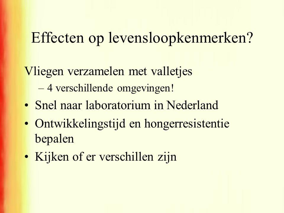 Effecten op levensloopkenmerken? Vliegen verzamelen met valletjes –4 verschillende omgevingen! •Snel naar laboratorium in Nederland •Ontwikkelingstijd