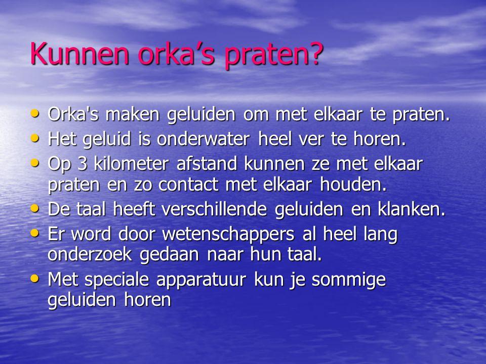 Kunnen orka's praten? • Orka's maken geluiden om met elkaar te praten. • Het geluid is onderwater heel ver te horen. • Op 3 kilometer afstand kunnen z