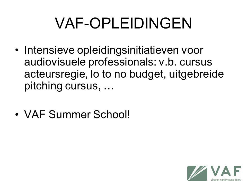 VAF-OPLEIDINGEN •Intensieve opleidingsinitiatieven voor audiovisuele professionals: v.b. cursus acteursregie, lo to no budget, uitgebreide pitching cu