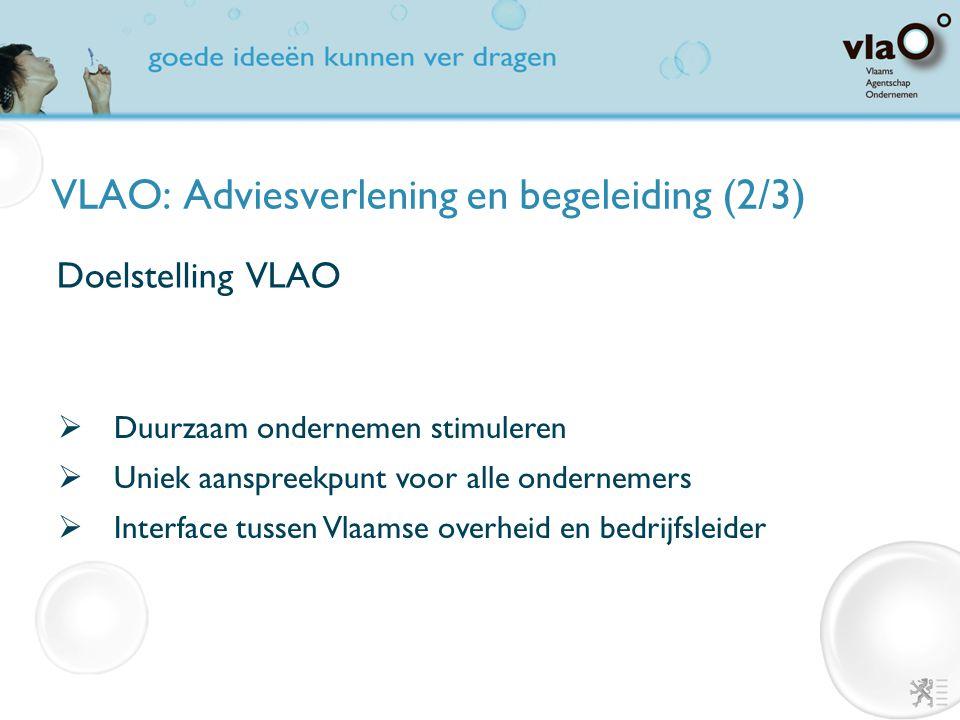 VLAO: Adviesverlening en begeleiding (2/3) Domeinen dienstverlening VLAO  Start  Financiering en steunmaatregelen  Vestiging en ruimtelijke ordening  Milieu en energie  Innovatie en design  Internationaal ondernemen  Werk en HR