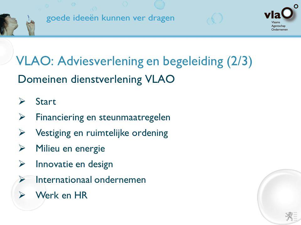 VLAO: Adviesverlening en begeleiding (2/3) Domeinen dienstverlening VLAO  Start  Financiering en steunmaatregelen  Vestiging en ruimtelijke ordenin