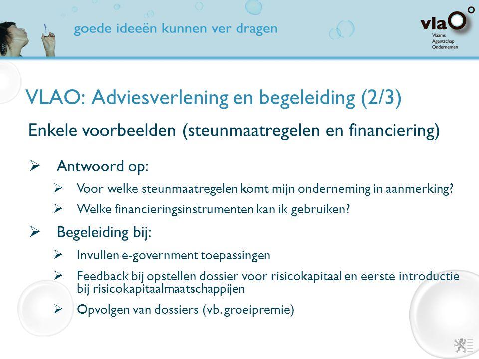 VLAO: Adviesverlening en begeleiding (2/3)  Antwoord op:  Voor welke steunmaatregelen komt mijn onderneming in aanmerking?  Welke financieringsinst