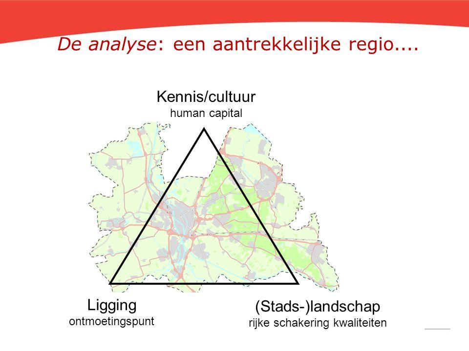 Kennis/cultuur human capital Ligging ontmoetingspunt (Stads-)landschap rijke schakering kwaliteiten De analyse: een aantrekkelijke regio....