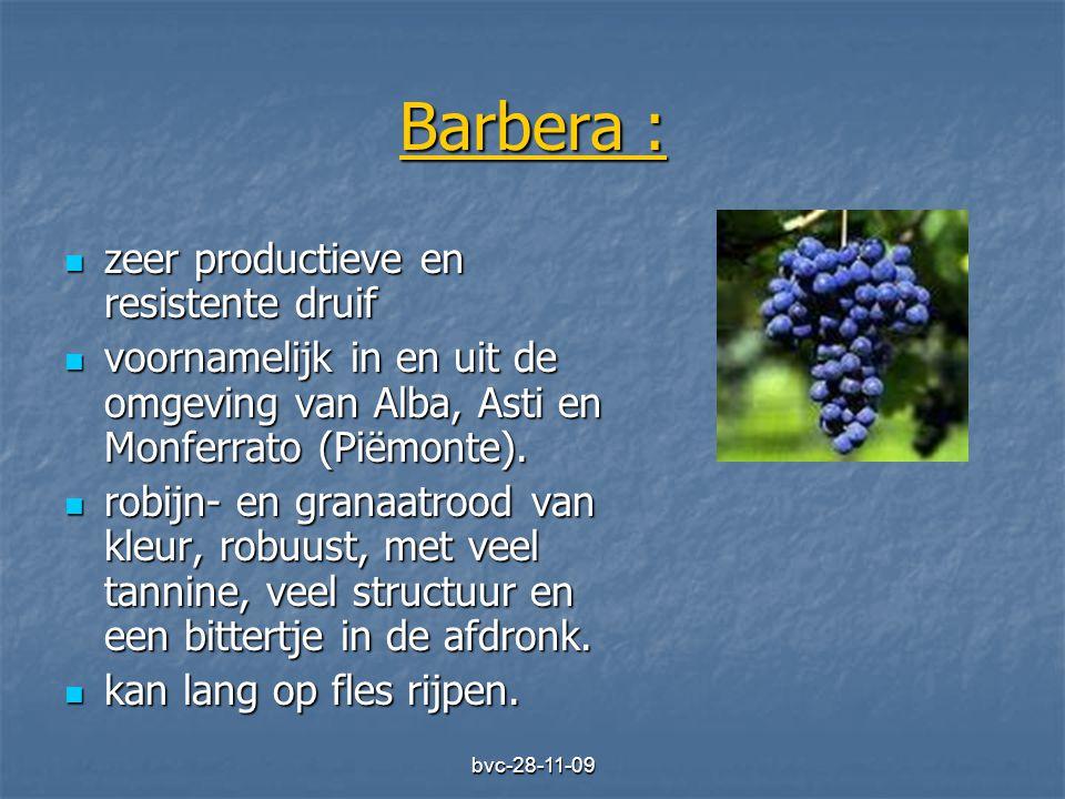 bvc-28-11-09 Barbera :  zeer productieve en resistente druif  voornamelijk in en uit de omgeving van Alba, Asti en Monferrato (Piëmonte).  robijn-