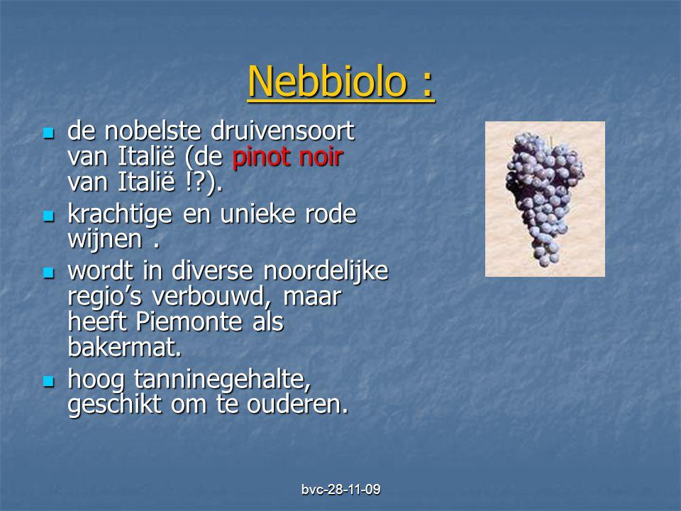 bvc-28-11-09 Nebbiolo :  de nobelste druivensoort van Italië (de pinot noir van Italië !?).  krachtige en unieke rode wijnen.  wordt in diverse noo