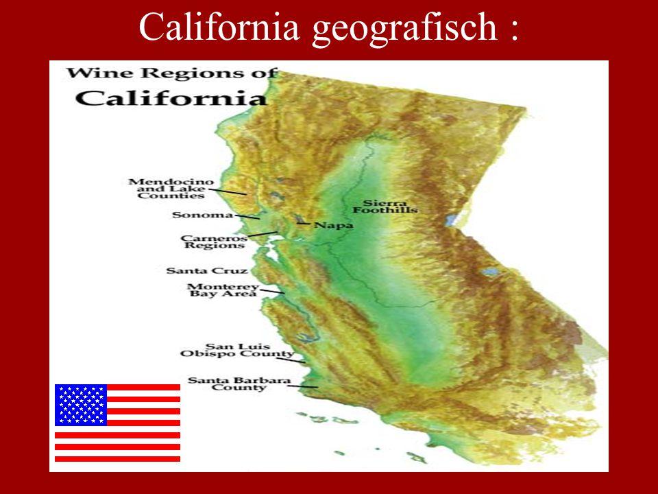bvc - 15/12/04 Wijn 5 : ' Ridge' •Jaar : 2000 •Appellatie : California •Bijzonderheden: ' Geyserville' is een wijngaard in Sonoma's Alexander Valley: 66 % zinfandel, 17% petite sirah en 17% carignan (oude stokken: 110 jr.) - gebruik van Amerikaanse eik, waarvan 25% nieuw