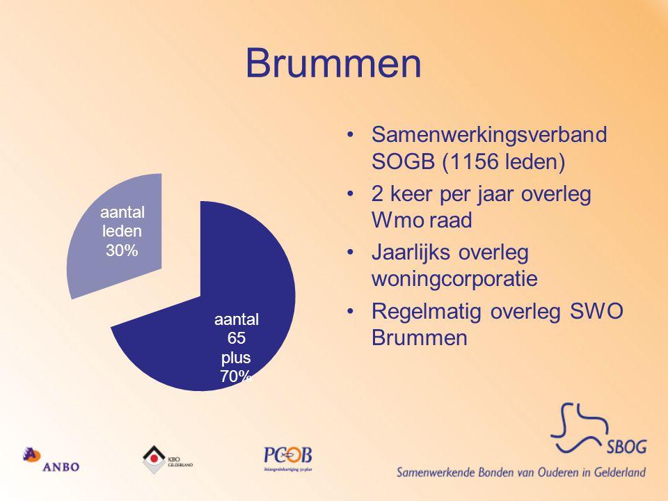 Brummen •Samenwerkingsverband SOGB (1156 leden) •2 keer per jaar overleg Wmo raad •Jaarlijks overleg woningcorporatie •Regelmatig overleg SWO Brummen