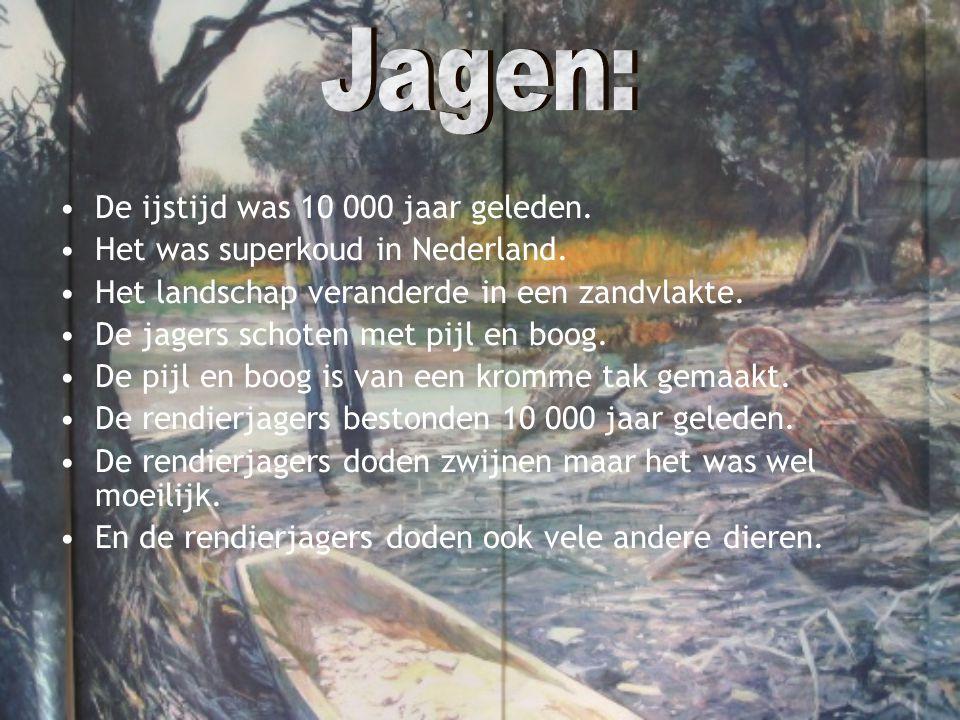 •De ijstijd was 10 000 jaar geleden. •Het was superkoud in Nederland. •Het landschap veranderde in een zandvlakte. •De jagers schoten met pijl en boog