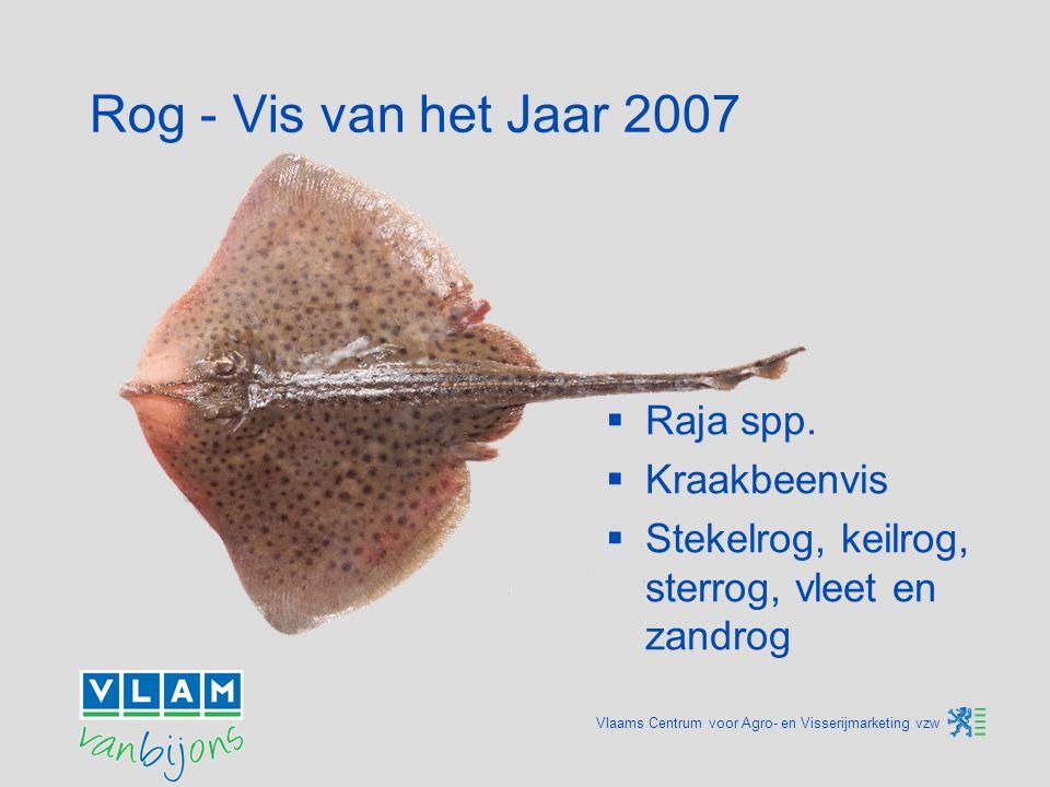 Vlaams Centrum voor Agro- en Visserijmarketing vzw Rog - Vis van het Jaar 2007