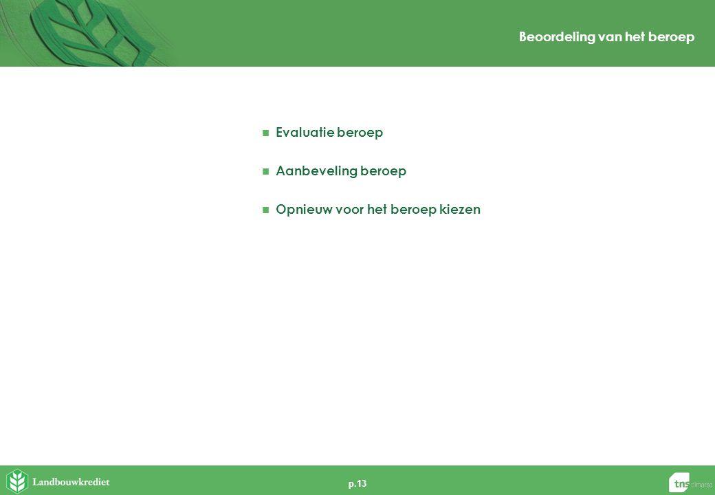 p.13 Beoordeling van het beroep  Evaluatie beroep  Aanbeveling beroep  Opnieuw voor het beroep kiezen