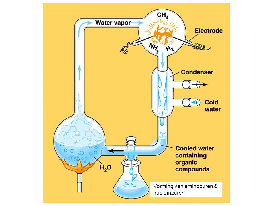 Vorming van aminozuren & nucleïnzuren
