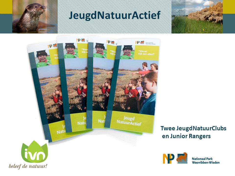 Communicatie - middelen Facebook accounts: - Nationaal Park Weerribben-Wieden - JeugdNatuurclub De Weerribben - JeugdNatuurclub De Wieden - Junior Rangers Nederland Twitter account: 941 volgers