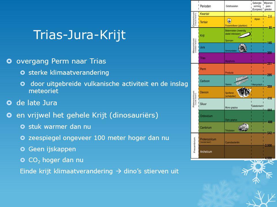 Trias-Jura-Krijt  overgang Perm naar Trias  sterke klimaatverandering  door uitgebreide vulkanische activiteit en de inslag van een enorme meteorie