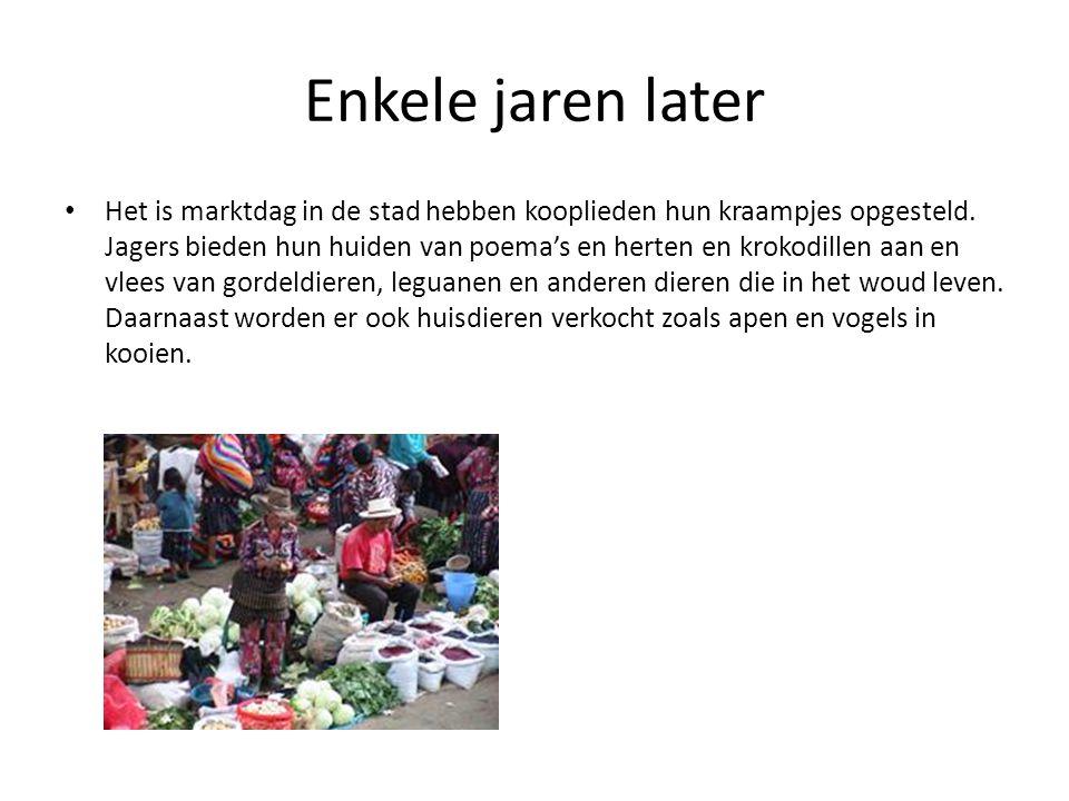 Enkele jaren later • Het is marktdag in de stad hebben kooplieden hun kraampjes opgesteld. Jagers bieden hun huiden van poema's en herten en krokodill