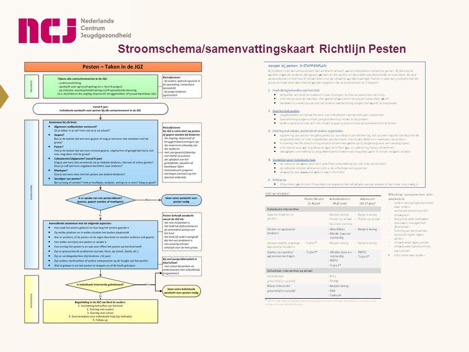Stroomschema/samenvattingskaart Richtlijn Pesten