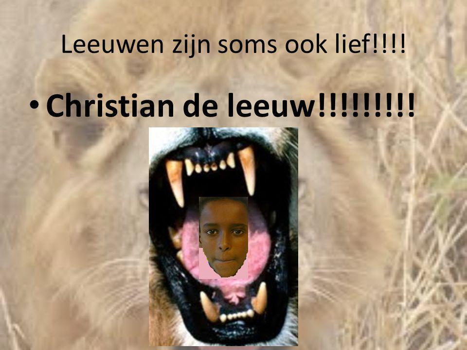Leeuwen zijn soms ook lief!!!! • Christian de leeuw!!!!!!!!!