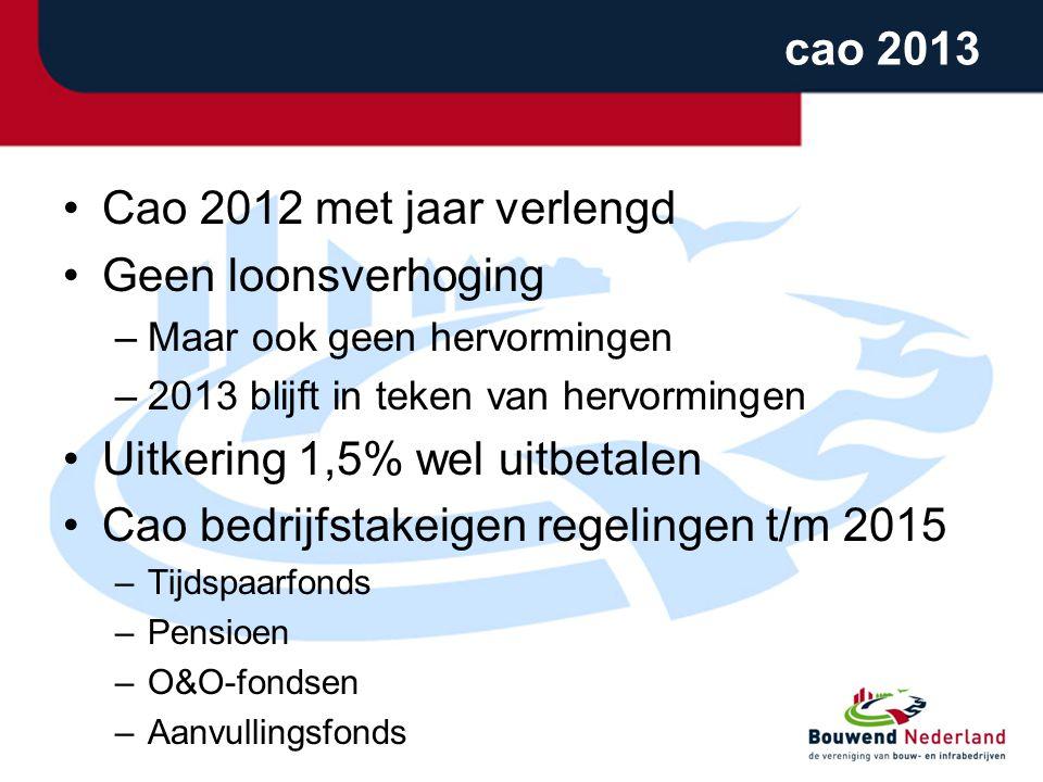 cao 2013 •Cao 2012 met jaar verlengd •Geen loonsverhoging –Maar ook geen hervormingen –2013 blijft in teken van hervormingen •Uitkering 1,5% wel uitbetalen •Cao bedrijfstakeigen regelingen t/m 2015 –Tijdspaarfonds –Pensioen –O&O-fondsen –Aanvullingsfonds