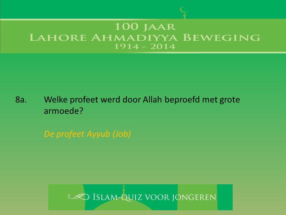 De profeet Ayyub (Job)
