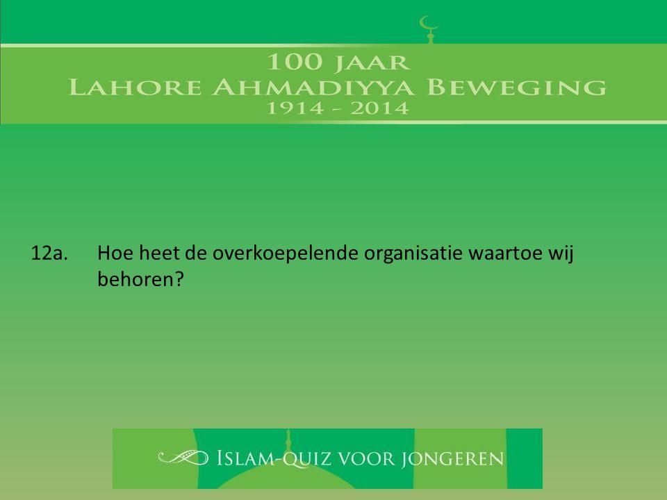 12a. Hoe heet de overkoepelende organisatie waartoe wij behoren?