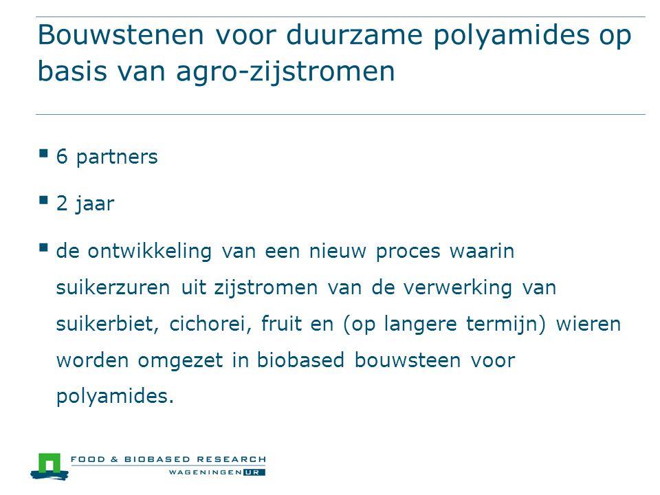 Bouwstenen voor duurzame polyamides op basis van agro-zijstromen  6 partners  2 jaar  de ontwikkeling van een nieuw proces waarin suikerzuren uit z