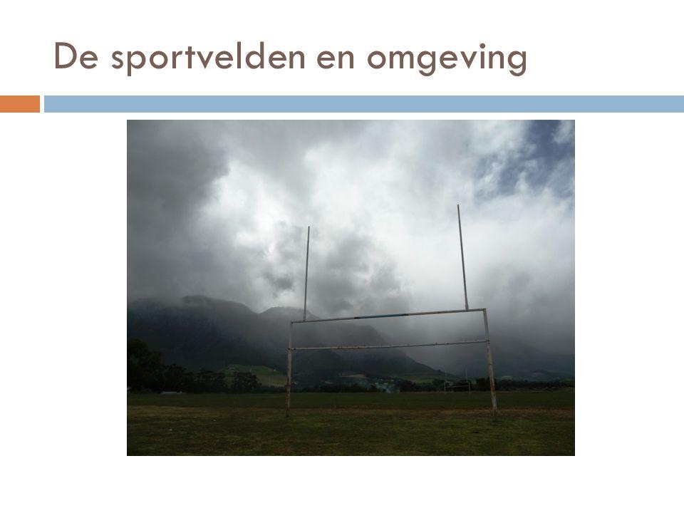 De sportvelden en omgeving