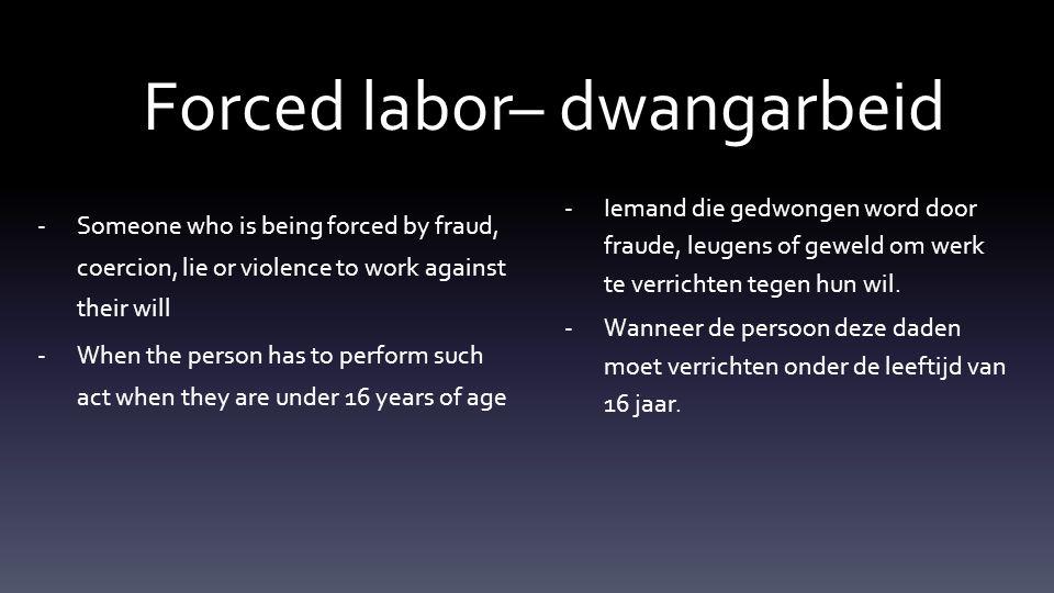 Discover what you can do to fight slavery Ontdek wat jij kan doen om slavernij te bestrijden.
