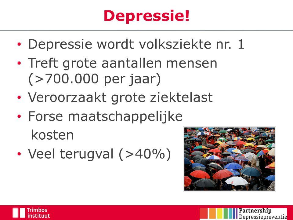 20 Gerichte depressie preventie