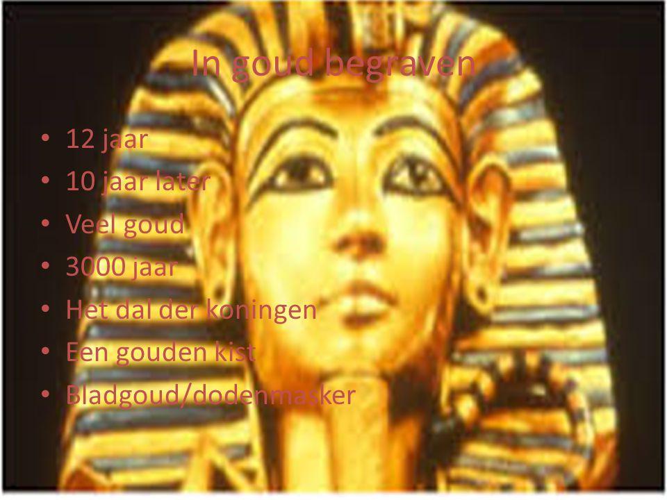 In goud begraven • 12 jaar • 10 jaar later • Veel goud • 3000 jaar • Het dal der koningen • Een gouden kist • Bladgoud/dodenmasker