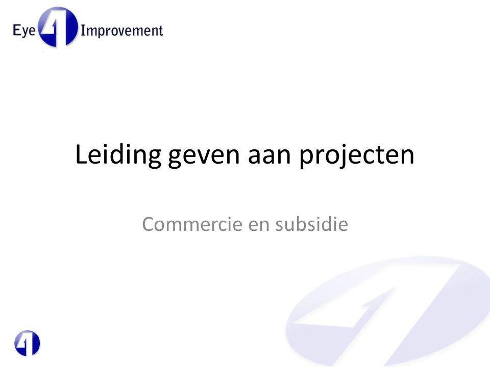 Leiding geven aan projecten Commercie en subsidie