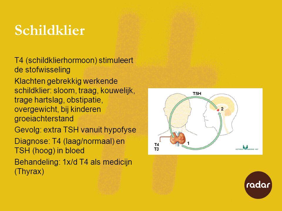Schildklier T4 (schildklierhormoon) stimuleert de stofwisseling Klachten gebrekkig werkende schildklier: sloom, traag, kouwelijk, trage hartslag, obstipatie, overgewicht, bij kinderen groeiachterstand Gevolg: extra TSH vanuit hypofyse Diagnose: T4 (laag/normaal) en TSH (hoog) in bloed Behandeling: 1x/d T4 als medicijn (Thyrax)