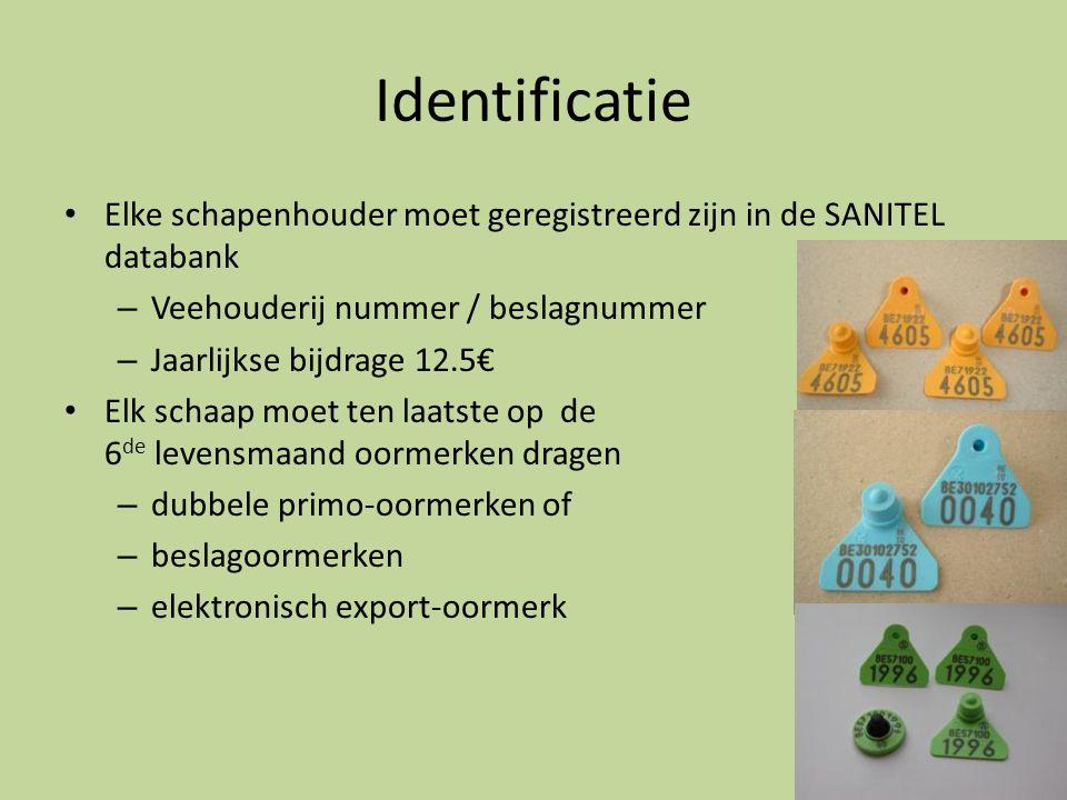 Identificatie • Elke schapenhouder moet geregistreerd zijn in de SANITEL databank – Veehouderij nummer / beslagnummer – Jaarlijkse bijdrage 12.5€ • El