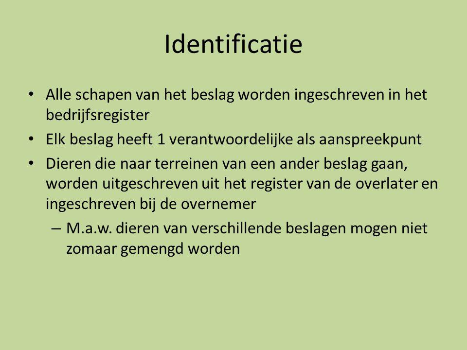 Identificatie • Alle schapen van het beslag worden ingeschreven in het bedrijfsregister • Elk beslag heeft 1 verantwoordelijke als aanspreekpunt • Die