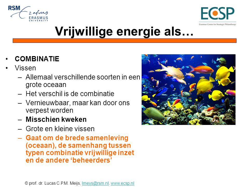 © prof. dr. Lucas C.P.M. Meijs, lmeys@rsm.nl. www.ecsp.nllmeys@rsm.nlwww.ecsp.nl Vrijwillige energie als… •COMBINATIE •Vissen –Allemaal verschillende