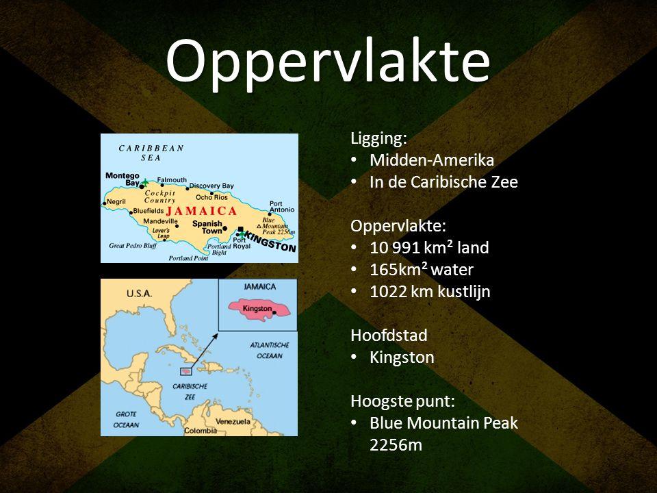 Oppervlakte Ligging: • Midden-Amerika • In de Caribische Zee Oppervlakte: • 10 991 km² land • 165km² water • 1022 km kustlijn Hoofdstad • Kingston Hoo