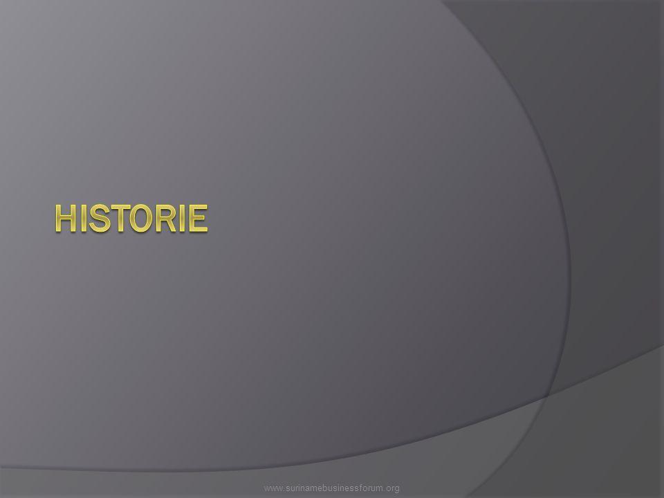Korte historie  19.05.1999: Gezamenlijke visie voor de ontwikkeling van het bedrijfsleven (ASFA, VSB, KKF)  11.09.2000: instelling SBF door min HI (missieve)  25.05.2005: RvM goedkeuring ontwerpwet SBF  18.10.2006: DNA goedkeuring wet SBF  01.06.2007: SBF operationeel  01.05.2008: SBC (werkarm SBF) operationeel www.surinamebusinessforum.org