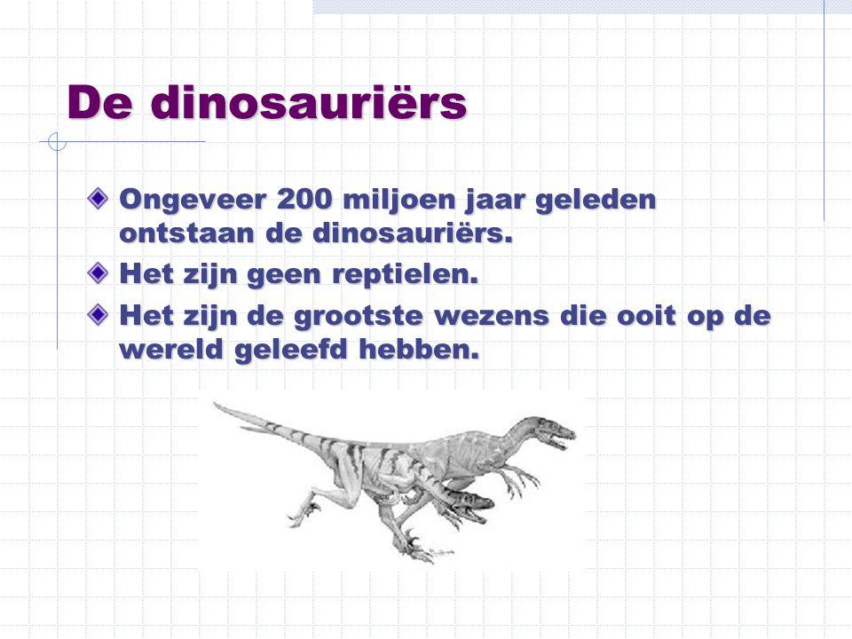 De dinosauriërs Ongeveer 200 miljoen jaar geleden ontstaan de dinosauriërs. Het zijn geen reptielen. Het zijn de grootste wezens die ooit op de wereld