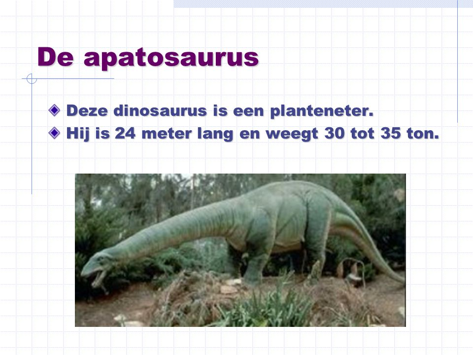 De apatosaurus Deze dinosaurus is een planteneter. Hij is 24 meter lang en weegt 30 tot 35 ton.