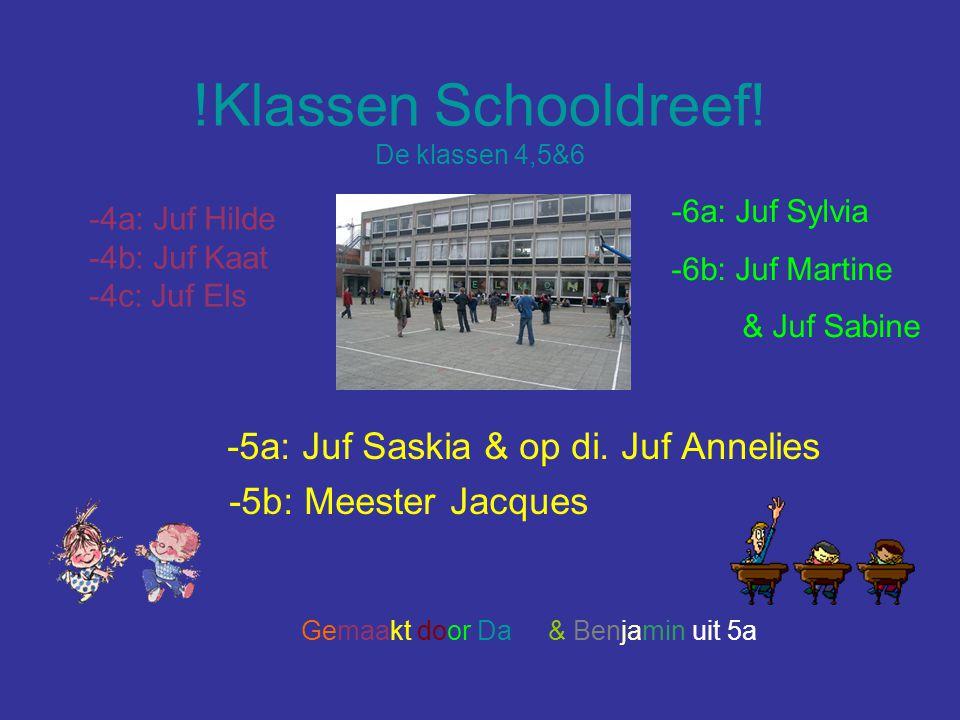 !Klassen Schooldreef! De klassen 4,5&6 -5a: Juf Saskia & op di. Juf Annelies -5b: Meester Jacques -4a: Juf Hilde -4b: Juf Kaat -4c: Juf Els -6a: Juf S
